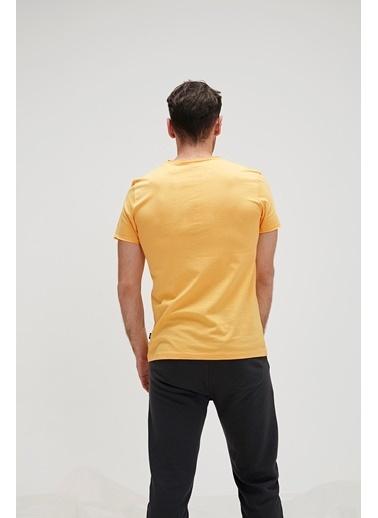 Bad Bear Erkek  Tişört 20.01.07.039 Sarı